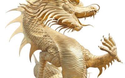 WEBINAR Drachen Qi Gong Refresher 2.Teil